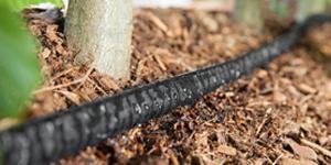 Effiziente Tropfbewässerung