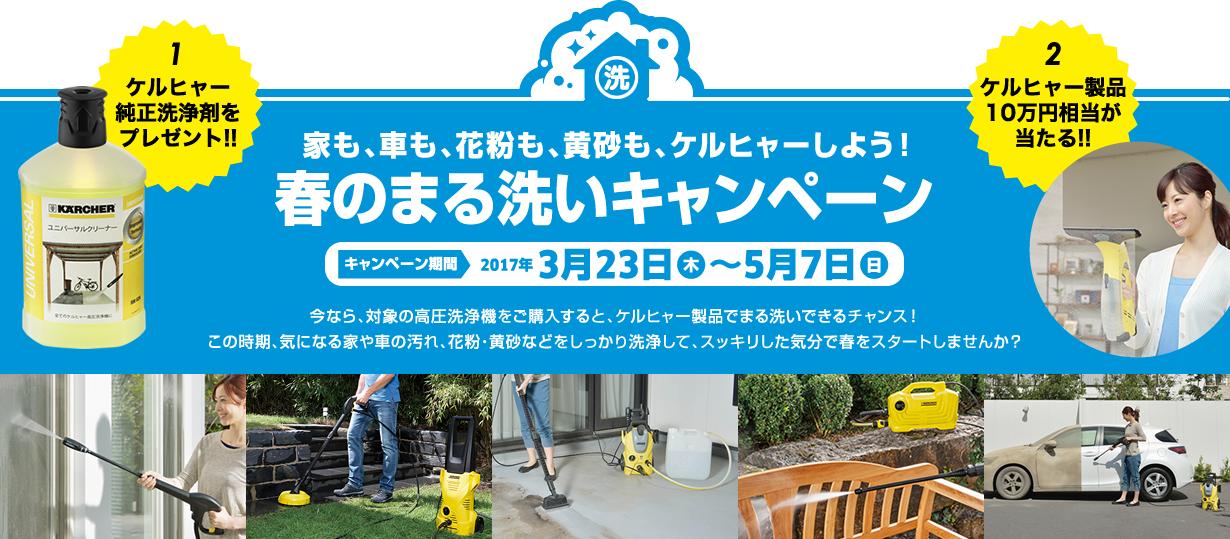 春の丸洗いキャンペーン